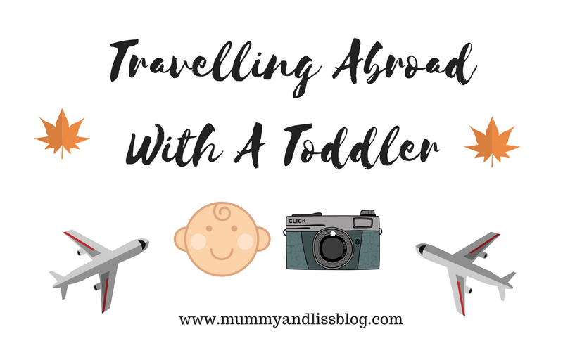 Travelling Abroad With A Toddler