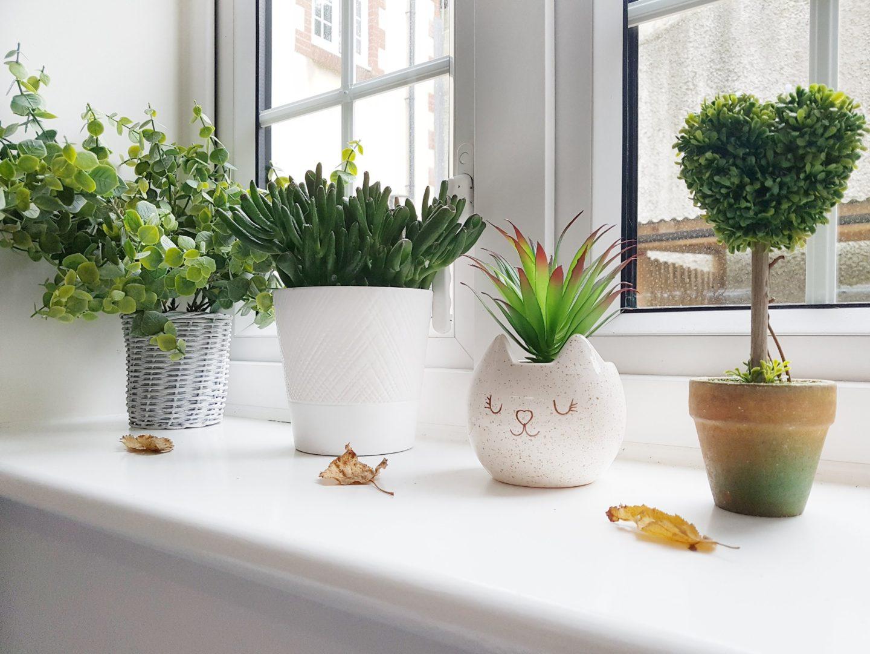 I wish I had a Garden – Gardening Trends 2017.