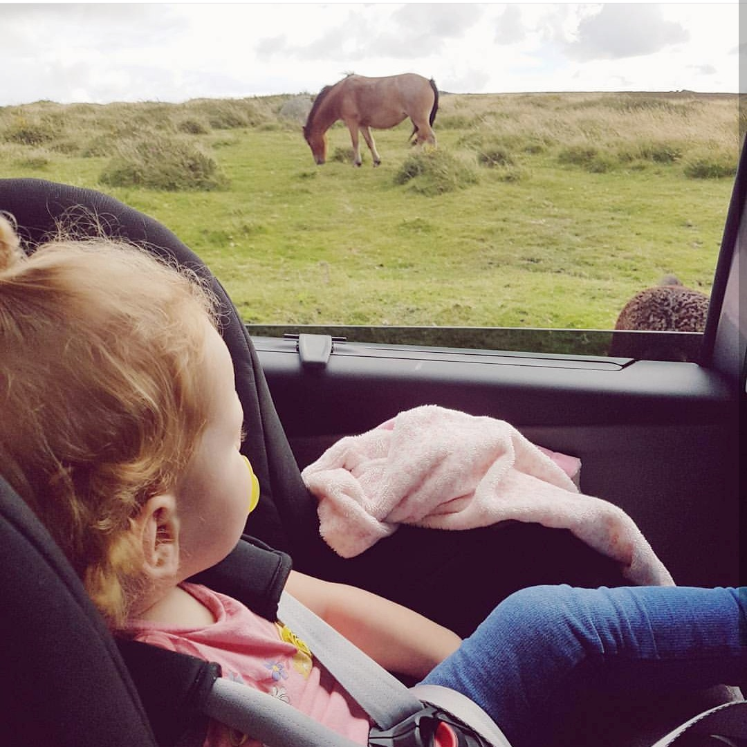 5 Things you need to do before going on a long car journey